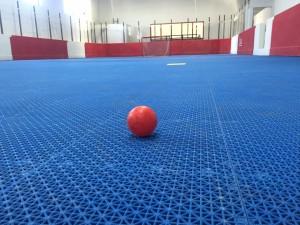 image_ballhockeyrink